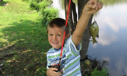 Kids Fishing Gear Guide for Beginners
