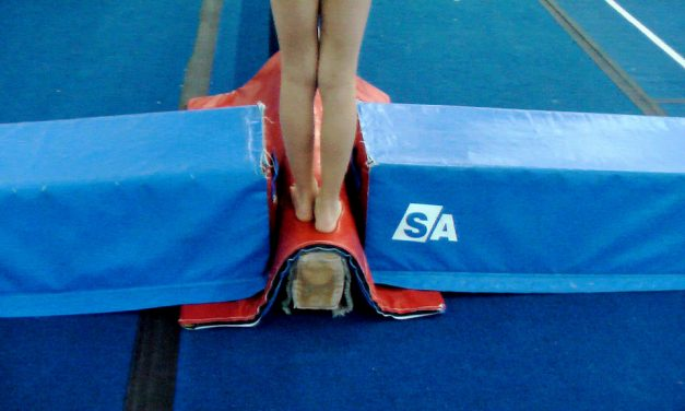Balance Beam for Kids Home Gymnastics