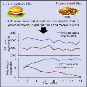 Ultra-processed foods and obesity